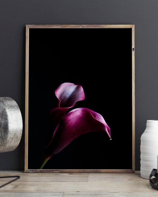 creocollective-shop-floral-19_mu
