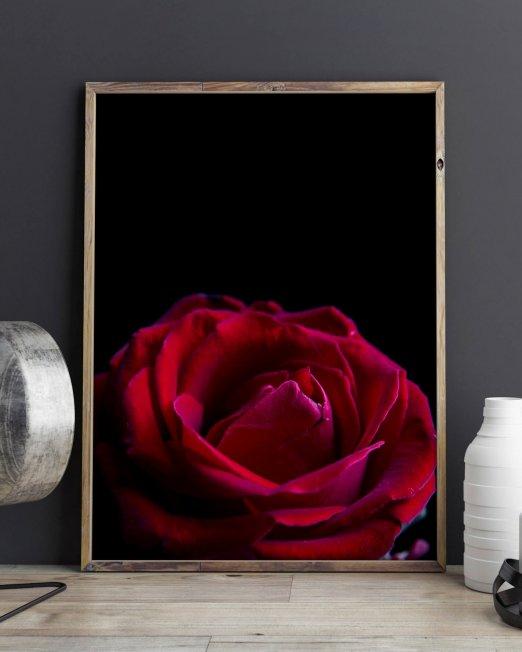 creocollective-shop-floral-22_mu