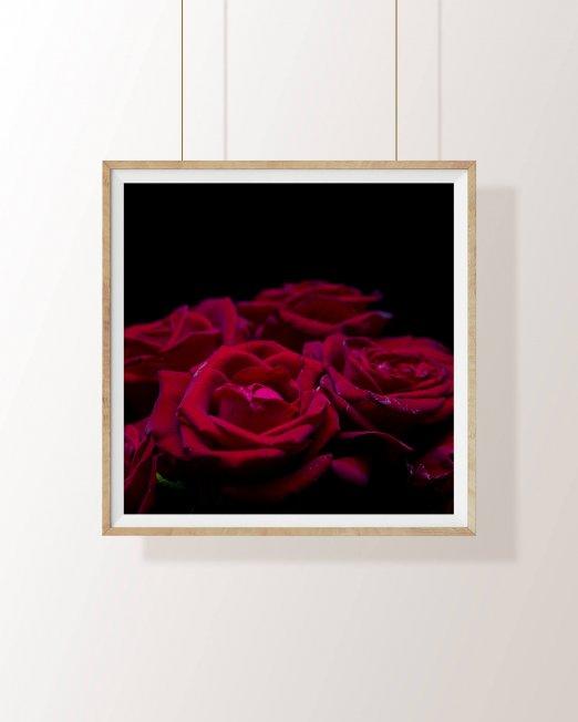 creocollective-shop-floral-24_mu