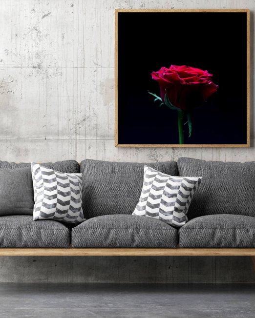 creocollective-shop-floral-25_mu