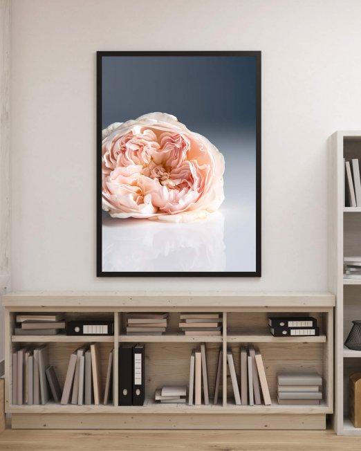 creocollective-shop-floral-33_mu